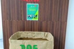 Dia C: Sicoob Original participa de campanha nacional de arrecadação de alimentos