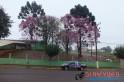 Foto: Arquivo campoere.com