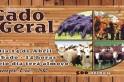 Sindicato Rural promove leilão de gado geral em Campo Erê.