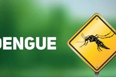 Alerta – Infestação do aedes aegypti continua em vias de epidemia de dengue.